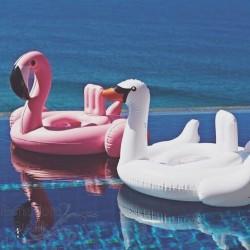 Flamingo ujumisrõngas beebidele